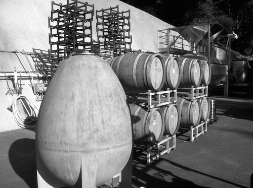 Egg and barrels